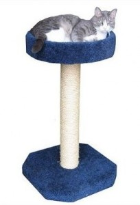 Cat sitting on the Molly and Friends Feline Recliner Scratching Post