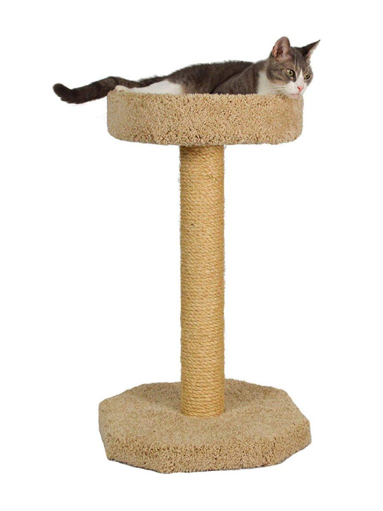 Molly and Friends Bed on Scratching Post 35 Inch